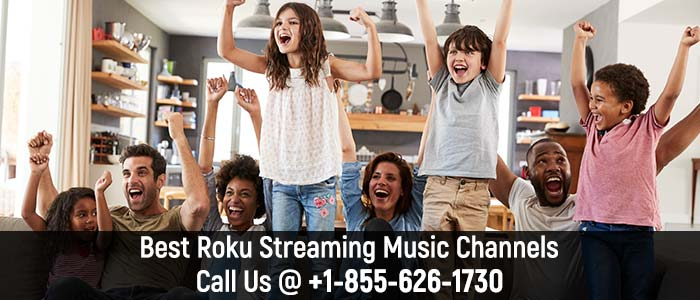 Best Roku Streaming Music Channels